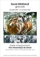 2007 DELESALLE invitation