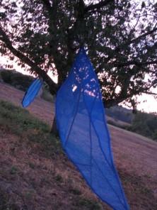 arbre ailé Shigeko HIRAKAWA à ALLES la nuit (3)