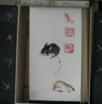 une histoire de poulailler , de rats et de tampon.. (1)