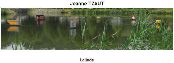 2013 J Tzaut
