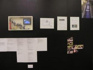 """Ateliers d'Ephémères 2012 : Marco Dessardo, à propos de """"dix goulottes et un parasite"""", Ephémères 2011"""
