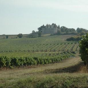 Vignobles au pied du Chateau deMonbazillac C-M.CRIVELLARO