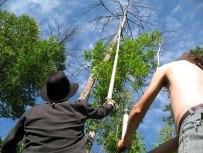 Erik SAMAKH ; Les flûtes de papawitish 2007 ; Installation sur les berges de la Rivière du Moulin ; Trafic'Art, Séquence, Chicoutimi, Quebec Un parcours sensoriel où les flûtes prennent place dans le boisé du parc Rivière-du-Moulin.
