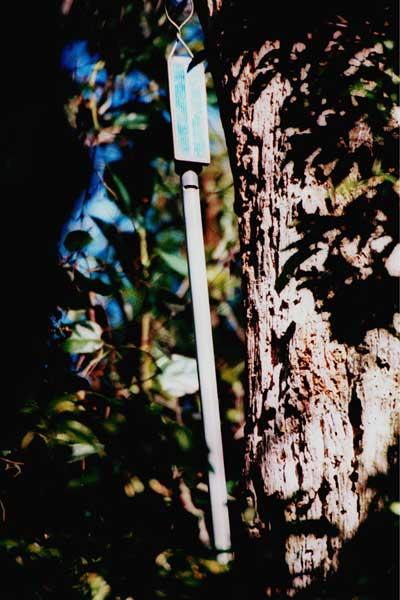 Détail d'une des 20 flûtes solaires installées dans la forêt de Tijuca, Rio de janeiro, Brésil en 2001 Photo ©Pedro Lobo