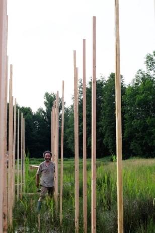 """2015 installation de """"Prêles et frêle"""" de Christophe GONNET © Dominique Korbendau (1)"""