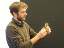 Comment tenir les feuilles de lierre pour produire un son...