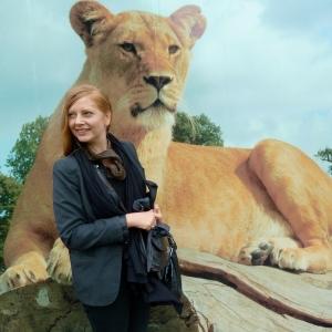 Lionne au safari park de Woburn, 2012 © Chantal Raguet