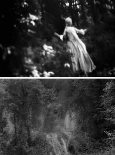 """expo """"AU ROI DU BOIS"""" Anne-Lise BROYER, photos extraites du Dossier de presse Agence Révélateur, 26e ITINÉRAIRES DES PHOTOGRAPHES VOYAGEURS BORDEAUX 2016"""