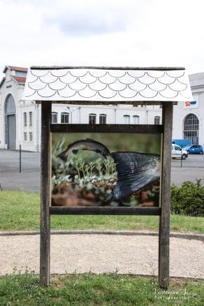 Toits des panneaux d'information faits par les lycéens et photographies de JF Noble en collaboration avec Michel Loiseau